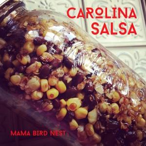 carolina salsa 1